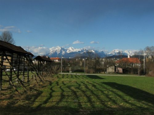 Pogled na Kamniško-Savinjske alpe iz Kosez