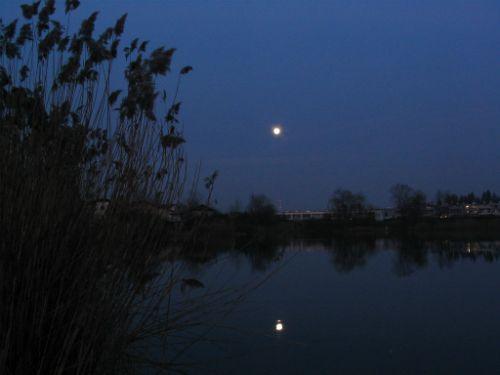 Koseški bajer v soju lune