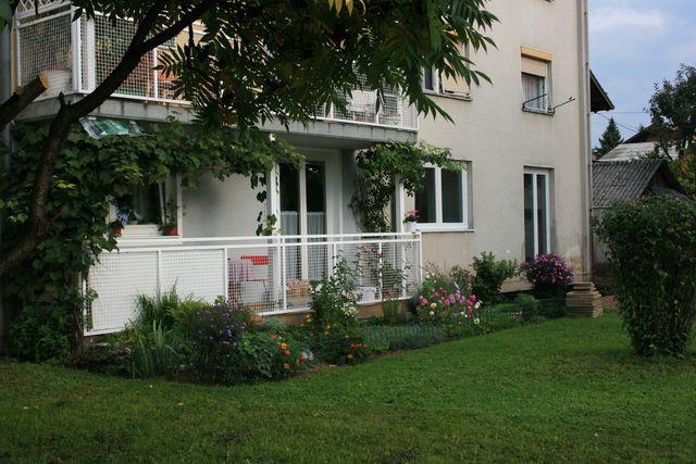 Cvetoče Koseze 2007