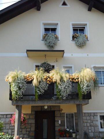 Cvetoče Koseze 2011