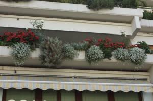 Najlepše urejen balkon v Kosezah 2012